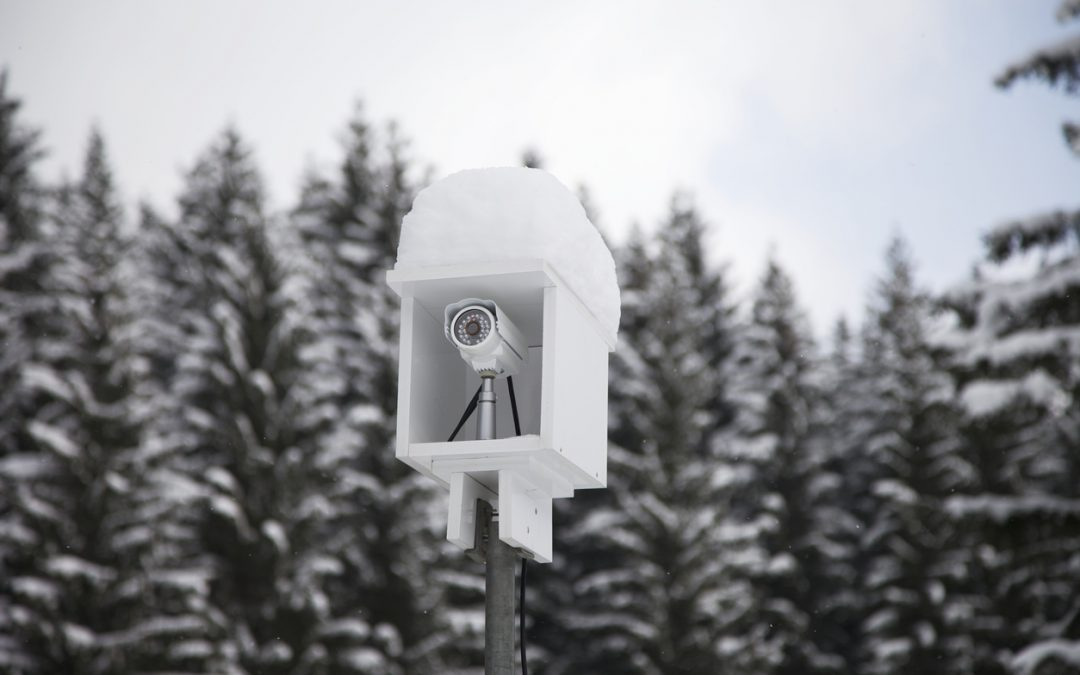 3 Ways Electronic Security Systems Shield Your Business from Winter Dangers